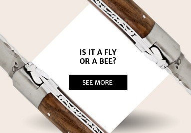 Fly or bee?